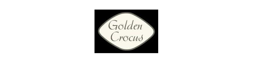 Golden Crocus